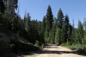 2017-07-04_3304_Lassen National Forest
