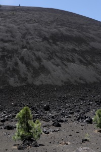 2017-07-05_3872_Lassen Volcanic National Park